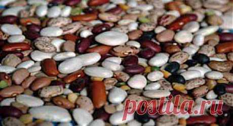 Полезные свойства фасоли и противопоказания, как употреблять | семиделка.ру