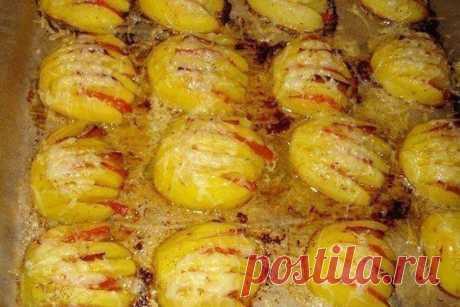 Картофельные ракушки — Женская страничка