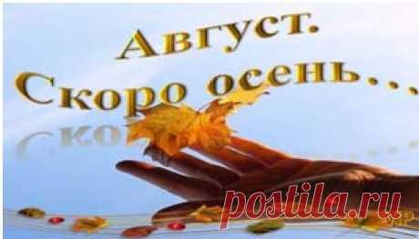 ЛЕТНИЙ АККОРД