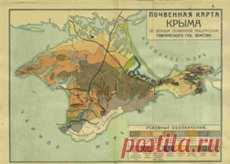 Планета Земля и Человек: Уникальные почвы Крыма перепишут и внесут в Красную книгу