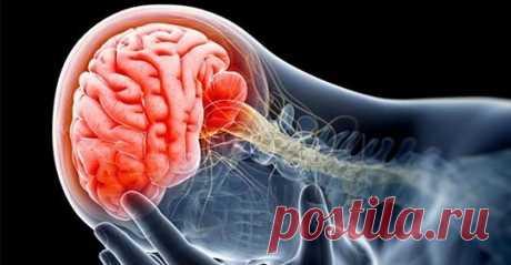 5 самых вредных привычек, вызывающих повреждения мозга Согласно недавним исследованиям, названы 5 самых вредных повседневных привычек, которые приводят к повреждению мозга. Мозг— одна из важнейших частей вашего тела, поскольку он управляет всеми функциями вашего тела...