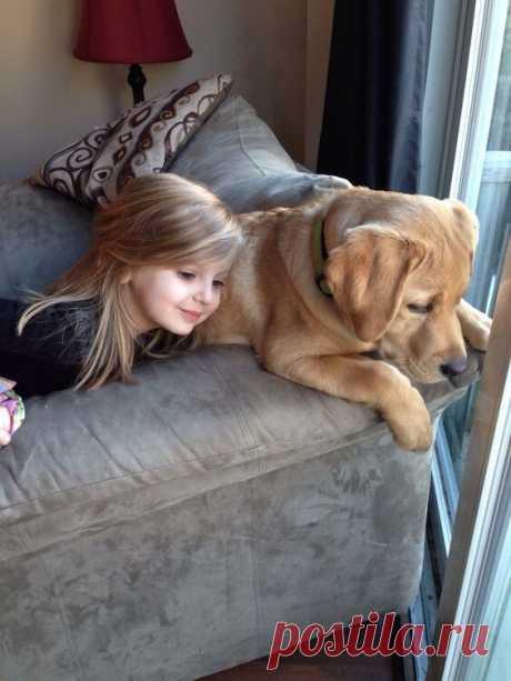 Нежная любовь детей и животных...