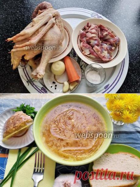 Холодец из домашней курицы и куриных желудков рецепт с фото, как приготовить на Webspoon.ru