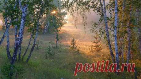 Serz — «Доброе утро!» на Яндекс.Фотках