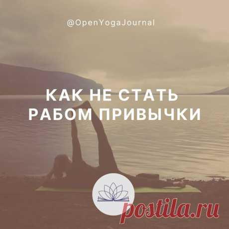 Что значит сила привычки? В чём её сильные и слабые стороны? Что есть привычка заниматься йогой? Какие существуют засады на пути раскрытия внутреннего потенциала, используя классические методы йоги. Почему рутина — знак успеха? Как сама жизнь заставляет нас каждый день эволюционировать?