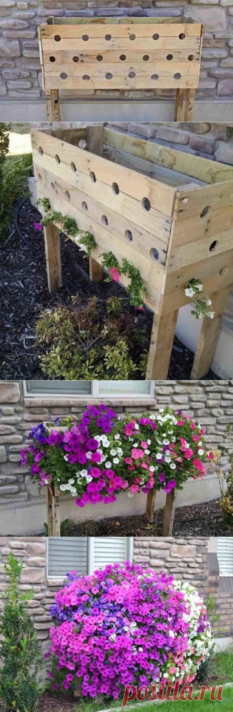 Он выпилил 19 отверстий в контейнере, чтобы через 5 месяцев сад превратился в предмет гордости! — Жизнь под Лампой!