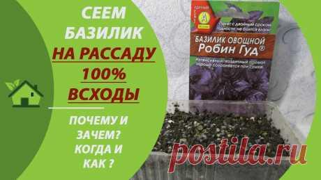 Базилик - сеем семена на рассаду / Как и когда сеять/ Условия выращивания в домашних условиях Рассказываю, как и когда сеять базилик на рассаду, условия выращивания в домашних условиях. ПОЛЕЗНЫЕ ССЫЛКИ НИЖЕ 👇↘✅ Болгарский перец от семян до всходов за...