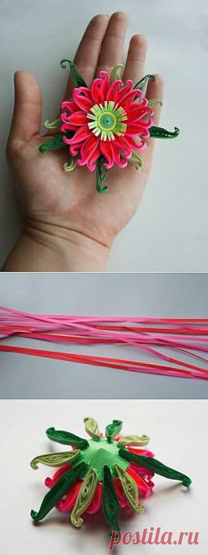 (+1) - Объемный цветок в технике квиллинг. Мастер-класс | Хвастуны и хвастушки