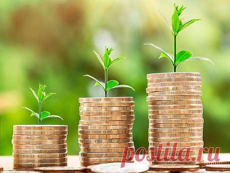 5 решений для грамотных инвестиций   Cash for cash