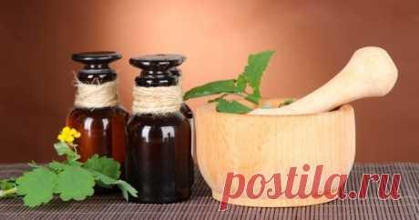 Средства и травы при вирусе папилломы