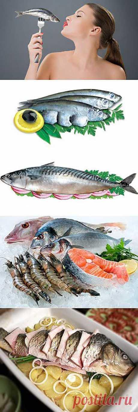 Какая рыба самая полезная. Рыба для похудения. Какая рыба полезна для беременных. | Твоя Iзюминка