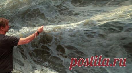 Невероятное искусство: живое море Рэна Ортнера