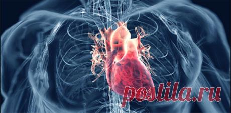 Топ-7 суперпродуктов для снижения высокого артериального давления ! - Советы для женщин