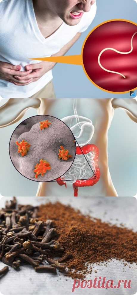 Вот как быстро очистить свое тело от паразитов и уменьшить жировые отложения, используя всего 2 ингредиента! - womanlifeclub.ru