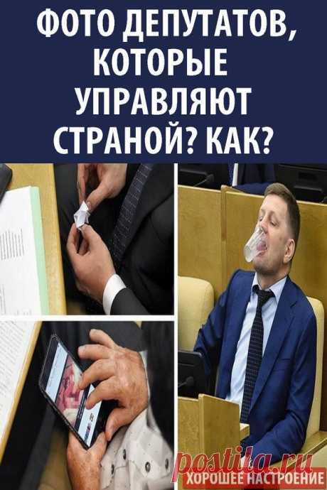 Фото депутатов которые управляют страной? Как?