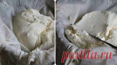 Готовим сыр «Филадельфия» самостоятельно в домашних условиях