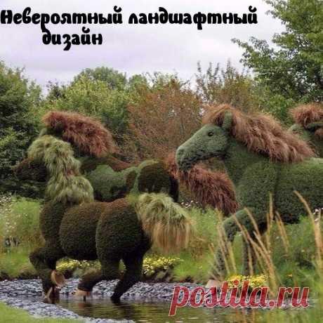 """Картинки с надписями """"Прикольные"""" (2270 шт.)"""