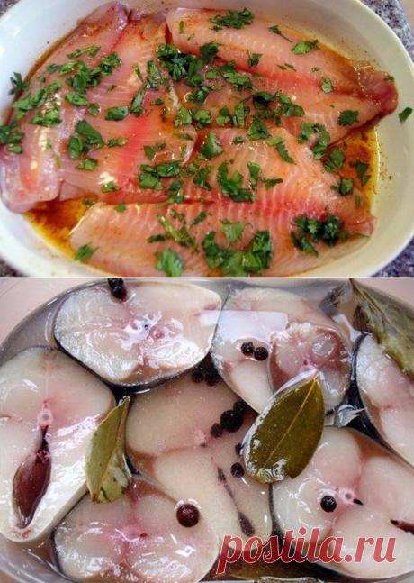 Быстро и просто! 9 маринадов для рыбы