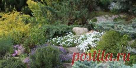 Альпийские горки на дачном участке и в саду своими руками, идеи