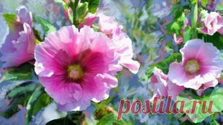 Цветочные акварели художника Alberto Guillen
