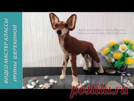 Собака Той терьер, ч.4. Dog toy terrier, р.4. Amigurumi. Crochet. Вязать игрушки, амигуруми.