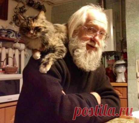 Однажды я встретил бездомную кошку:  — Как Ваши дела?  — Ничего, понемножку...  — Я слышал, что Вы тяжело заболели...  — Болела.  — Так, значит, лежали в постели?  — Лежала на улице много недель —  Бездомной, мне некуда ставить постель.  Подумал я: «Странно, что в мире огромном  Нет места собакам и кошкам бездомным.»  — Вы слышите, кошка? Пойдёмте со мной —  Темнеет, и значит, пора нам домой!