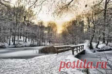 Сегодня 20 ноября в народном календаре Федотов день
