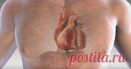 5 ознак серцевого нападу, про які буде сигналізувати ваше тіло — Пошепки