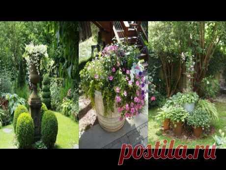 Полезные идеи оформления двора и сада