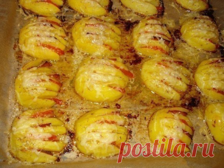 Картофельные ракушки