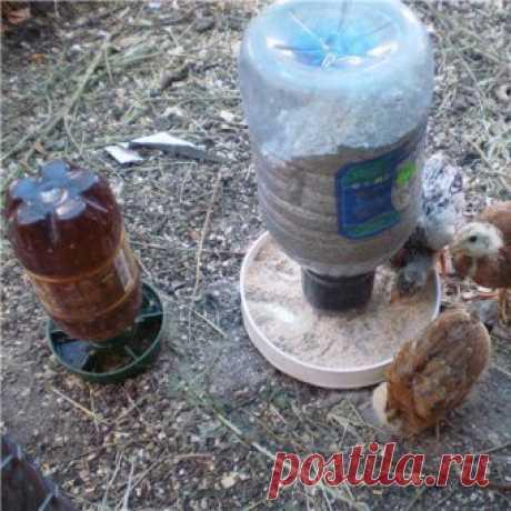 поилка для птиц ландшафтный дизайн: 19 тыс изображений найдено в Яндекс.Картинках
