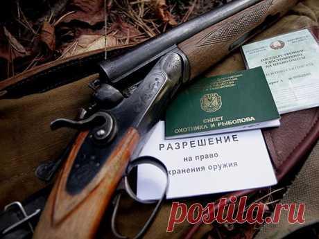 Как получить разрешение на хранение и приобретение охотничьего ружья? | Закон и порядок