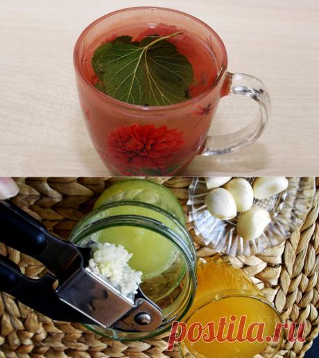 4 рецепта, для эффективного разжижения крови и снижения риска атеросклероза сосудов | PRO-ЗОЖ | Яндекс Дзен