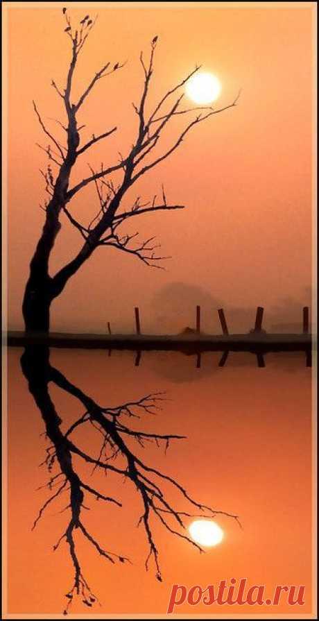 ✯ Reflections | Sunrise, Sunset