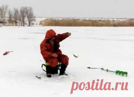 Всего за 5 минут! Как собрать простую снасть универсального применения | Рыбалка для людей | Яндекс Дзен