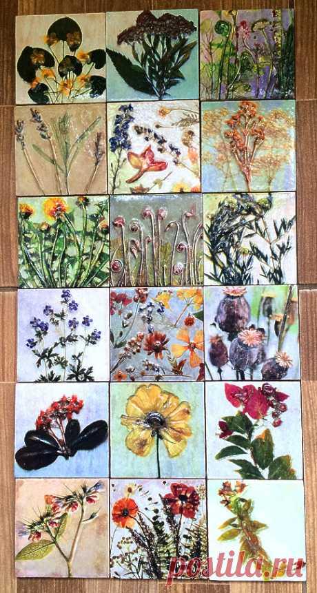 плитка керамическая гербарий, плитка ручной работы, плитка растения, плитка цветы, интерьер в стиле прованс, плитка авторская