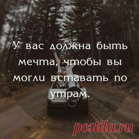«Согласны?» — карточка пользователя Светлана М. в Яндекс.Коллекциях