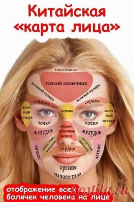 Как с помощью высыпаний на лице можно определить проблемную область 👱🏻♀ | OK.RU