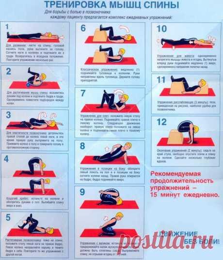 Los ejercicios eficaces para el tirante de la espalda y la columna vertebral