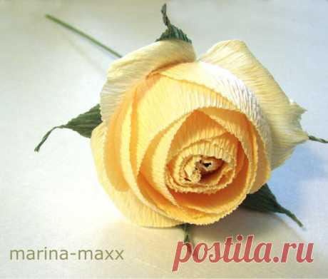 Мастер-Класс английской розы.