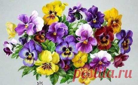 Схема вышивки «цветы» - Вышивка крестом