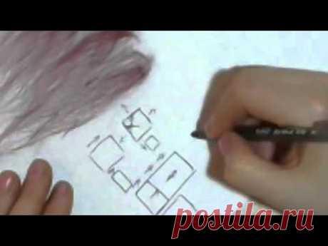 Принципы раскладки шерсти