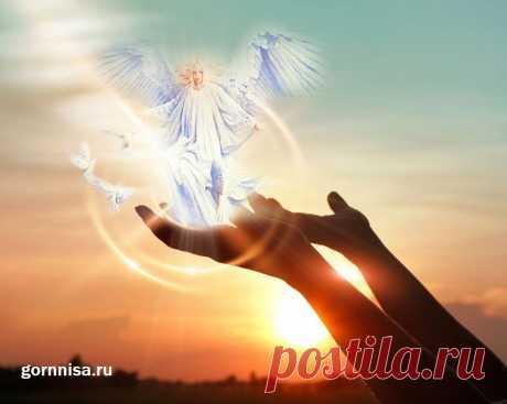 Линия ангела-хранителя на вашей ладони | ГОРНИЦА Линия ангела-хранителя на вашей ладони - одна из самых интересных линий в хиромантии. Как именно она дублирует линию жизни имеет большое значение