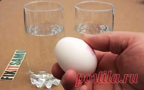 Элементарный способ проверить свежесть куриного яйца
