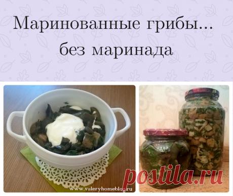 Домашний блог Валерии Питерской: Маринованные грибочки.