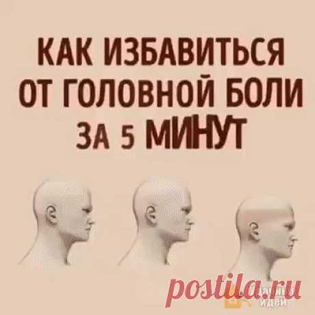 (41) Одноклассники