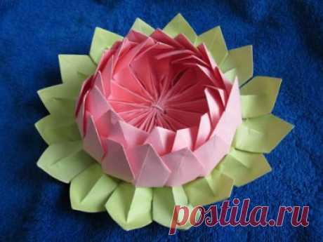 Оригами схема настоящая кувшинка из бумаги своими руками как сделать.