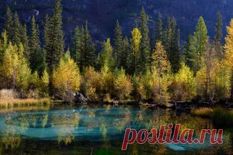 Осень на гейзерном озере. Фото сделал Михаил Пучков (nat-geo.ru/photo/user/288913/) недалеко от села Акташ, Улаганский район, Республика Алтай.