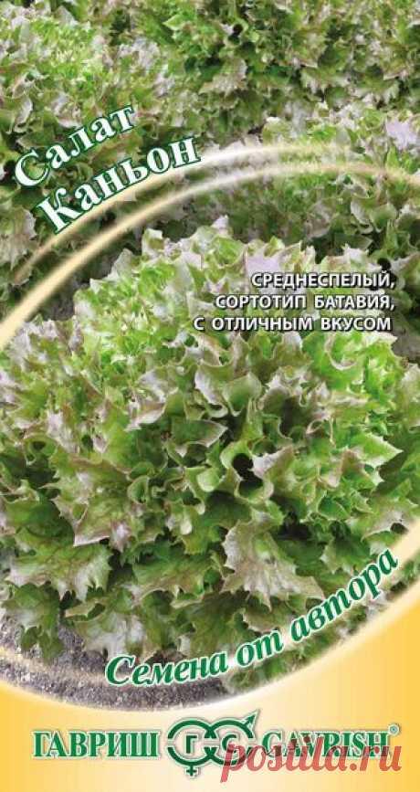 """Салат """"Каньон"""", листовой, хрустящий"""