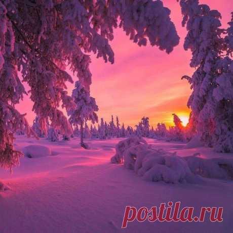 Հիանալի երեկո բոլորիս💙'❄️ Այսօրվա վերջում երևում է հիասքանչ վաղը ... Ձմեռը դա հեքիաթ է․․․գեղեցիկ, սպիտակ և մաքուր։ Թող Ձեր կյանքն էլ լինի այդպիսին...Որտեղ ձեր մտքերն են, անյտեղ դուք եք Փորձեք միշտ լինել լավ տեղերում...💙'❄️💫